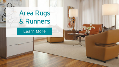 Area Rugs at Carpet One Floor & Home
